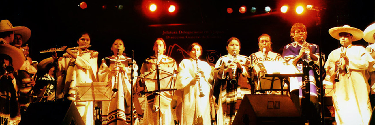 Banda en concierto